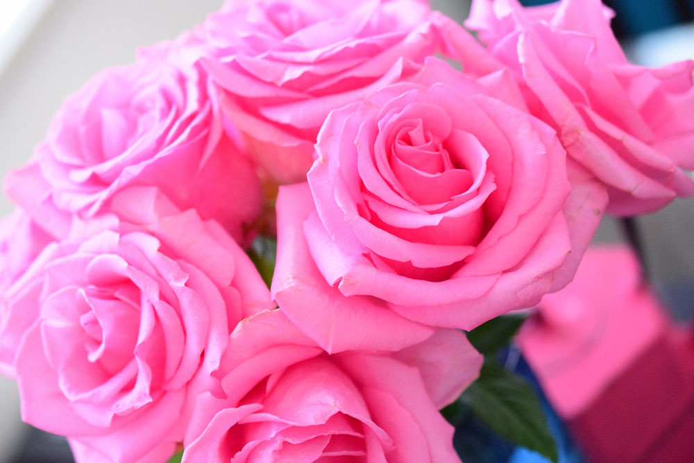 ROSE CRYSTA®-CO(ローズクリスタ・シーオー)