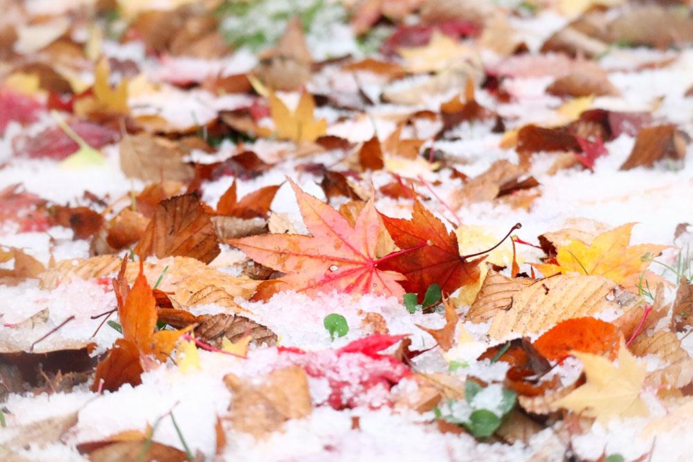 冬に肌荒れする原因とは?対策や予防方法を伝授!
